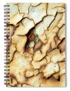 Jaded Spiral Notebook