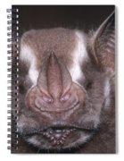 Jamaican Fruit Bat Spiral Notebook