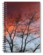 January Sunset Silhouette Spiral Notebook