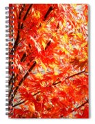 Japanese Maple Leaves 12 In The Fall Spiral Notebook