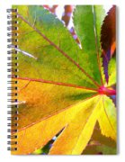 Japanese Maple Leaves 7 In The Fall Spiral Notebook