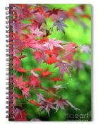 Japanese Maple Leaves Spiral Notebook