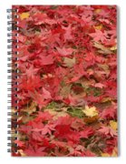 Japanese Red Maple Leaves Spiral Notebook