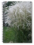 Japanese Silver Grass Full Height Spiral Notebook