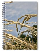 Japanese Silver Grass Spiral Notebook