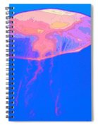 Jazzy Jelly Spiral Notebook