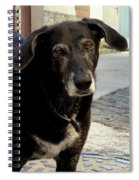 Jean-luc's Dog Spiral Notebook