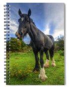 Jeany Spiral Notebook