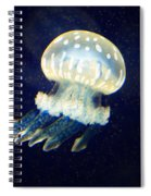 Jelly Fish Spiral Notebook