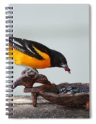 Jelly Time Spiral Notebook