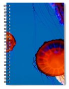 California Monterey Aquarium Jellyfish Exhibit  Spiral Notebook