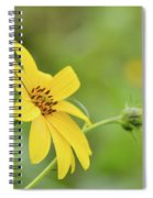 Jerusalem Gold Spiral Notebook
