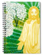 Jesus On Mount Thabor Spiral Notebook