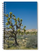 Joshua Trees Number 339 Spiral Notebook