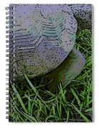 Journey Spiral Notebook