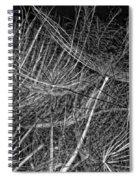 Journey Inward Monochrome Spiral Notebook