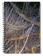 Journey Inward Spiral Notebook
