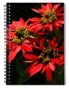 Joy And Prosperity IIi Spiral Notebook