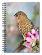 Joy Of Spring Spiral Notebook