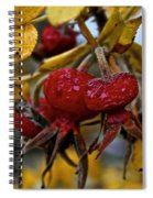 Juicy Rose Hips Spiral Notebook