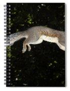 Jumping Gray Squirrel Spiral Notebook