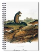 Jumping Mouse, 1846 Spiral Notebook