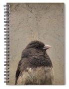 Junco Spiral Notebook