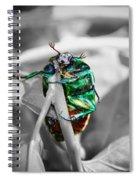 Junebug Spiral Notebook