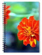 June's Bloom Spiral Notebook