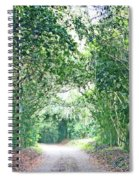Jungle Drive Avery Island La Spiral Notebook