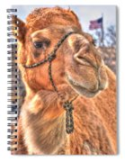 Just A Tad Bit Shy Spiral Notebook