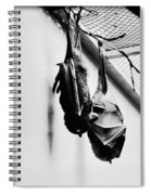 Just Hanging Around Spiral Notebook