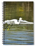Just Soar  Spiral Notebook
