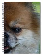 Just Try Me Spiral Notebook