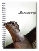 Just Wanted To Say.... Spiral Notebook