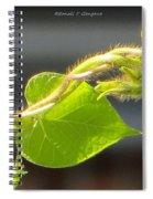 Juvenile Curls Spiral Notebook