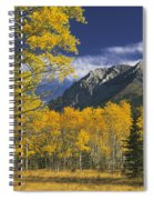 Kananaskis Fall Colors Spiral Notebook
