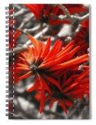 Kangaroo Paw Spiral Notebook