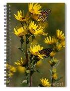 Kansas Monarchs Spiral Notebook