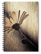 Kardashian Spiral Notebook