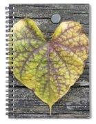 Kardia Spiral Notebook