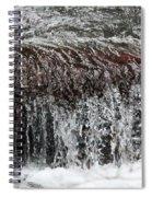 Keep It Clean Spiral Notebook