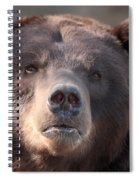 Keep Your Eye On The Camera Spiral Notebook