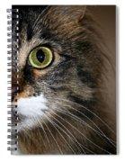 Keeping An Eye On You Spiral Notebook