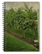 Kelowna Vineyard Spiral Notebook