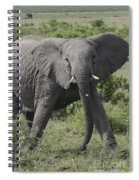 Kenya Masai Mara Charging Elephant  Spiral Notebook