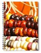 Kernel Close Up Spiral Notebook