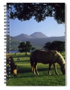 Killarney,co Kerry,irelandtwo Horses Spiral Notebook