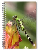 Killer In Green Spiral Notebook