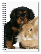 King Charles Spaniel And Rabbit Spiral Notebook